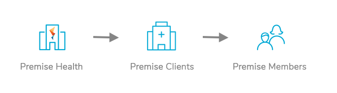 Graph showing the Premise direct healthcare model of business to client to member | Premise Health Blog